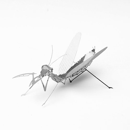 Mantis Religiosa (Insectos) Metal 3D Puzzle