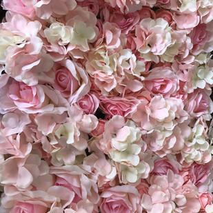 Dream in Pink.jpg