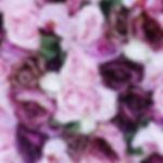 purple wall close up_edited.jpg