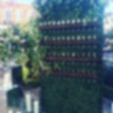 champagne wall 2_edited.jpg