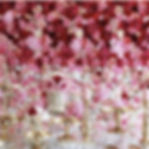 Ombre DYI 12_edited.jpg