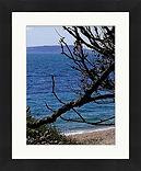 frame (6).jpg