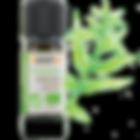 huile essentielle verveine yunnan Litsée citronnée arrêt du tabac