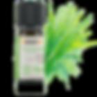 huile essentielle de Vétiver biologique arrêt du tabac