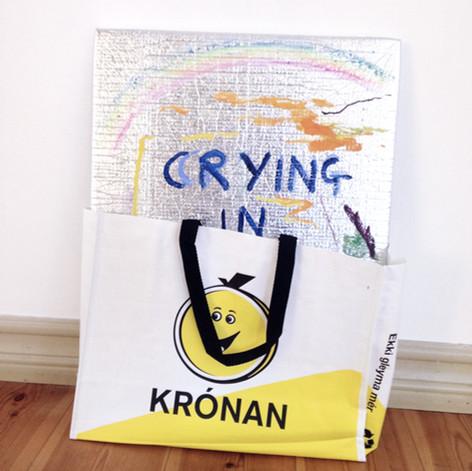 Crying in Krónan, 2017