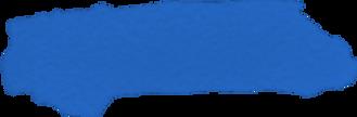 blue button 3.png