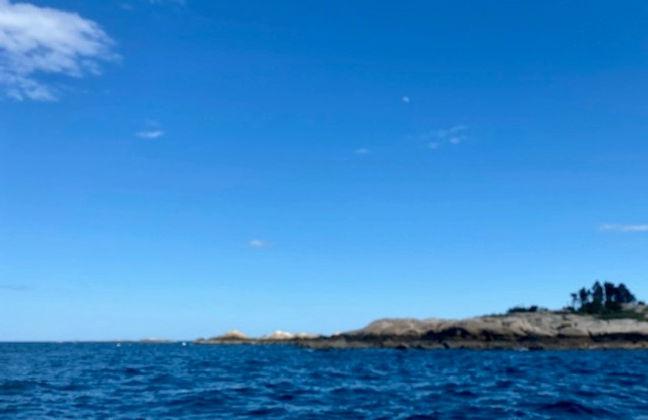 Ocean%20view_edited.jpg