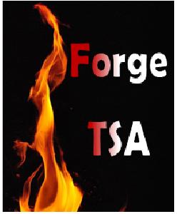7th Dec, Forge TSA Introduction event