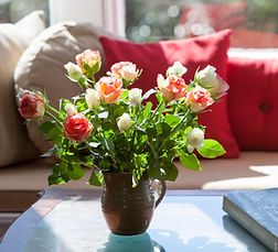 Pretty roses bathed in sunlight at the bay window seat at Myrtle House Penzance