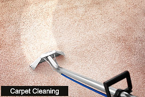 Removing%20dirt%20from%20carpet%20with%2