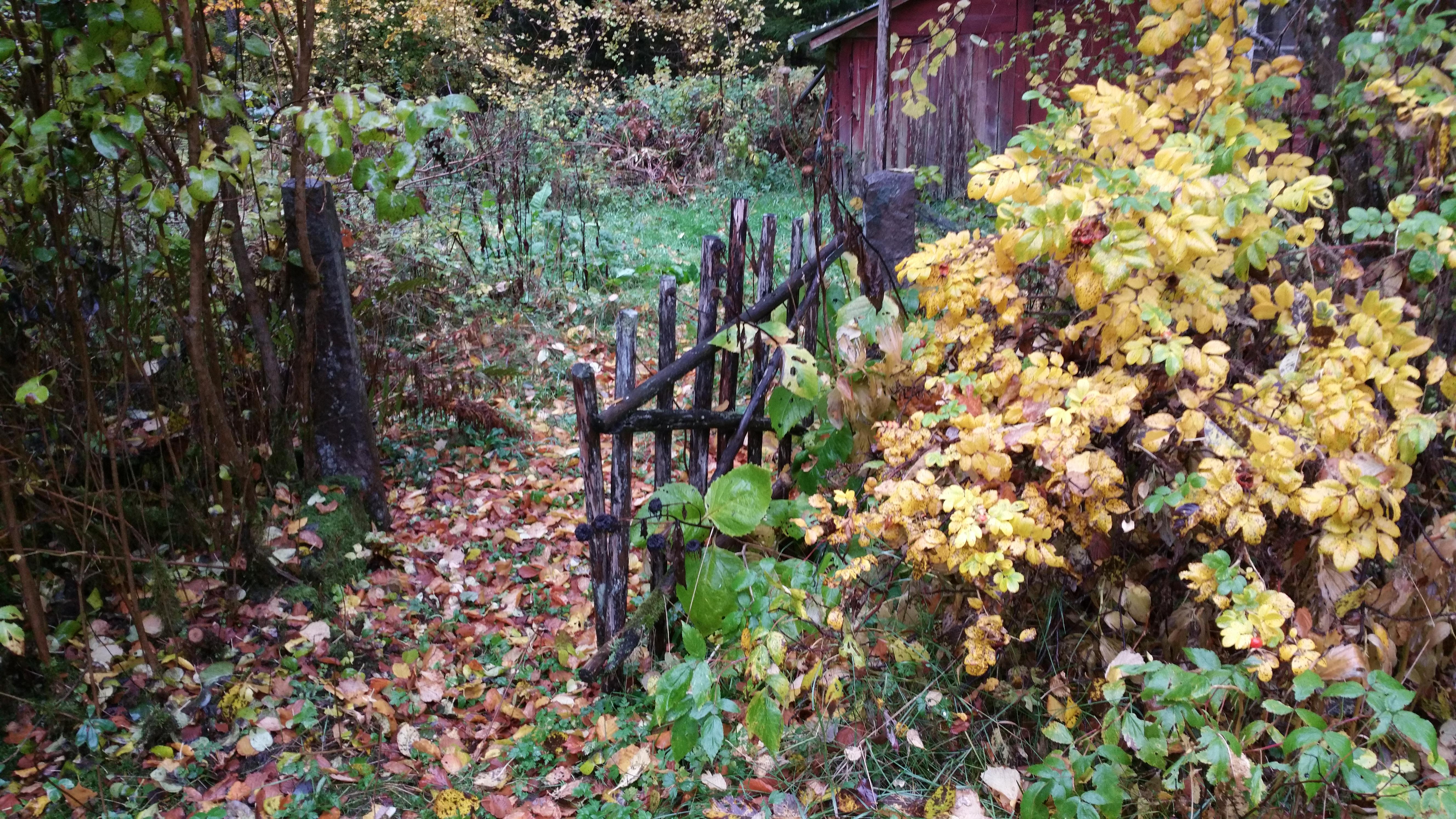 Byte av staket och grindar