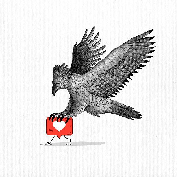 Águila harpía.jpg