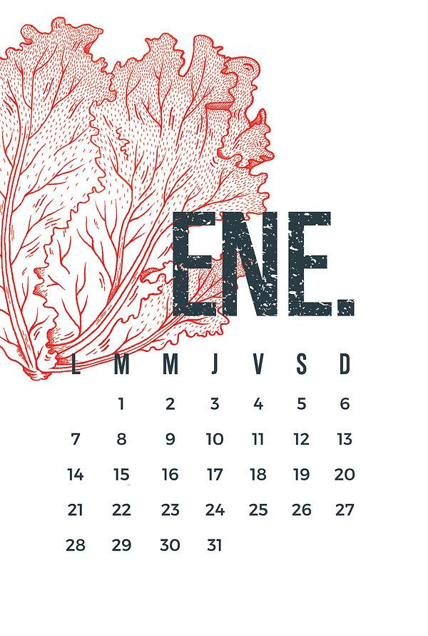 enero-01-01.jpg