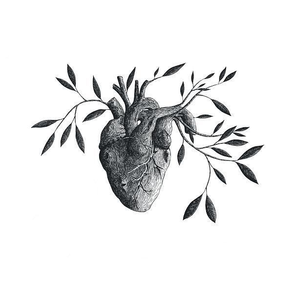 Heartofwood.jpg