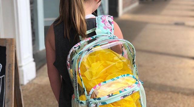 We love the clear Vera Bradley backpack!