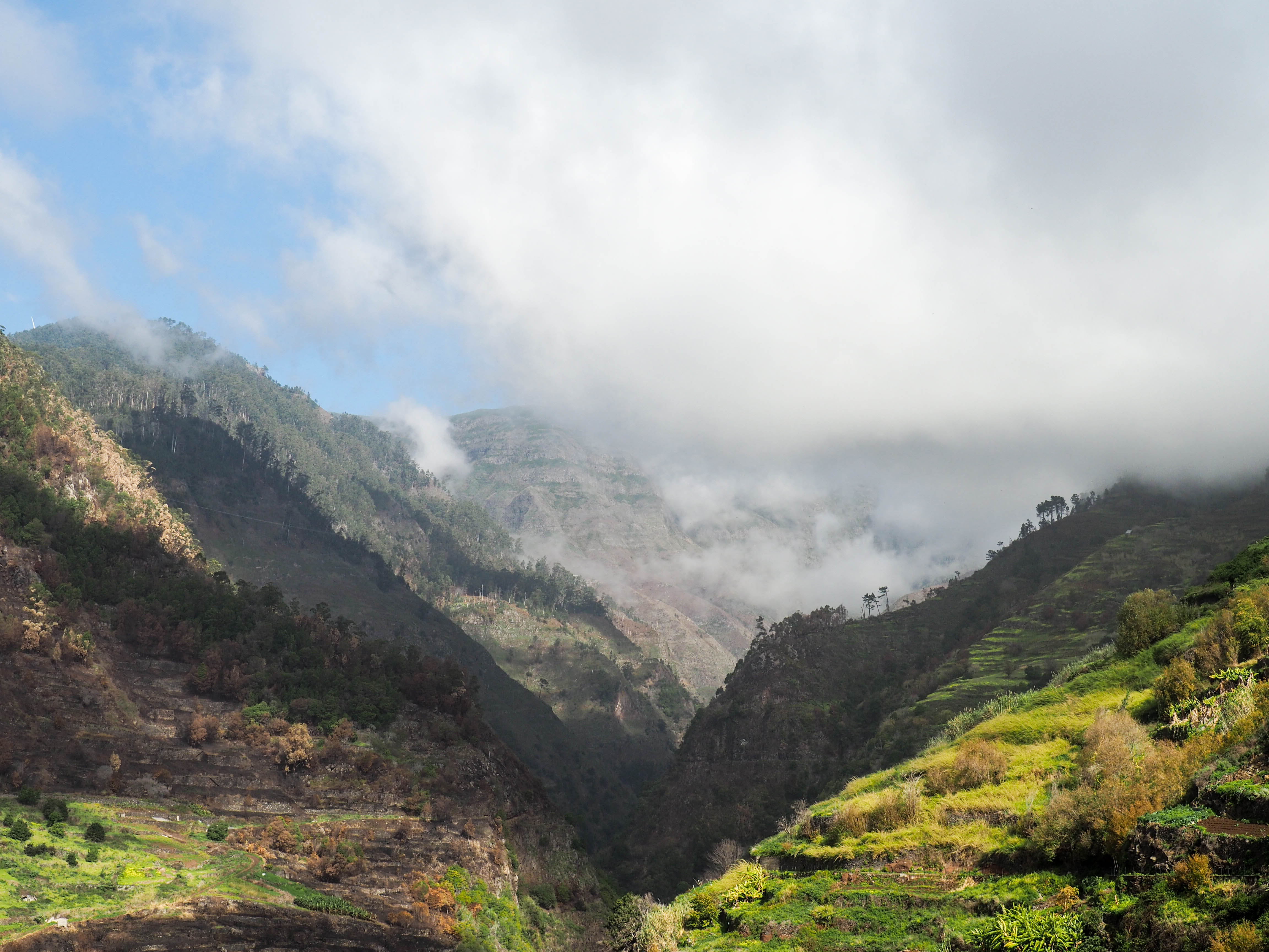Bergwelt Madeira