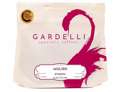 Gardelli Speciality Coffees - MULISH/ETHIOPIA - Heirloom/Washed