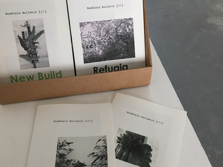 Buddleia Bulletin