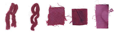 COCHINEAL (DACTYLOPIUS COCCUS) - Dye Only