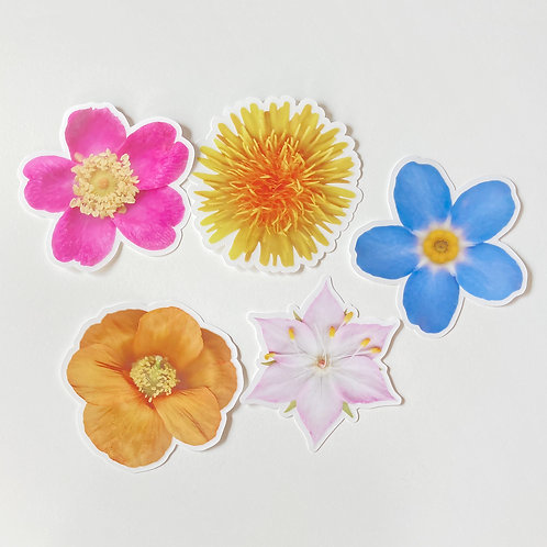 WILDFLOWERS - PACK OF 5 CLEAR STICKERS