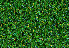 Spiny Wood Fern