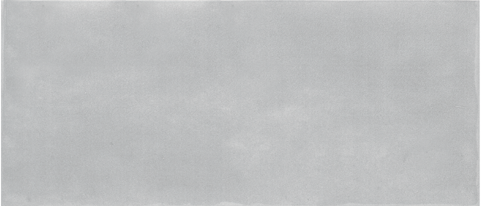 "Chantilly Maiolica Tender Gray 4"" x 10"""