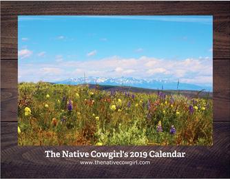 My 2019 Calendar is available!