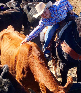 Our Young Cowboy...