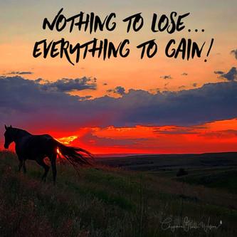 Nothing To Lose!