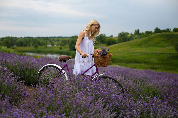 blonde with a bicycle walks on a lavende