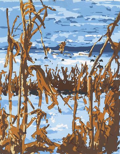 Corn Field, Manhattan, Montana Print