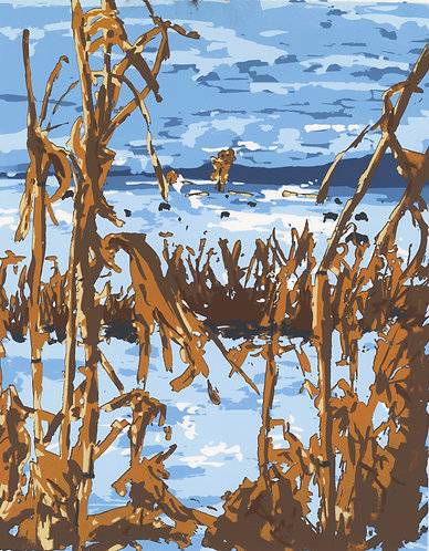 Corn Field, Manhattan, Montana Print