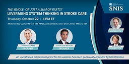 The Whole or Just a Sum of Parts? Leveraging System Thinking in Stroke Care