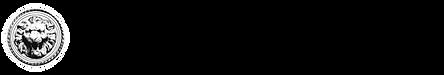 MFC banner 2-1.png