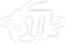 STL_white_logo.png