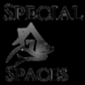 Logo-transparent-background_edited.png