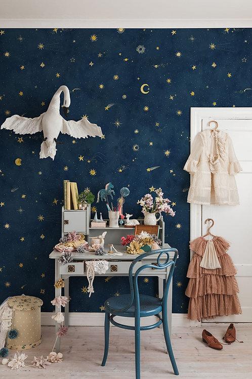 Starry SkyPetrol