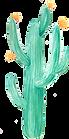 watercolor-llamas-elemen.png