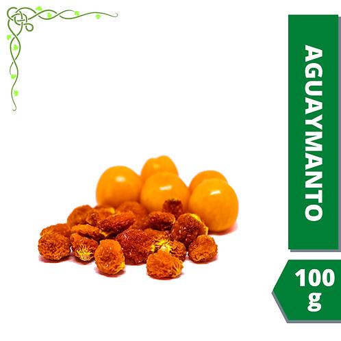 Aguaymanto deshidratado (100 g)