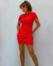 roteskleideinzelnk.png