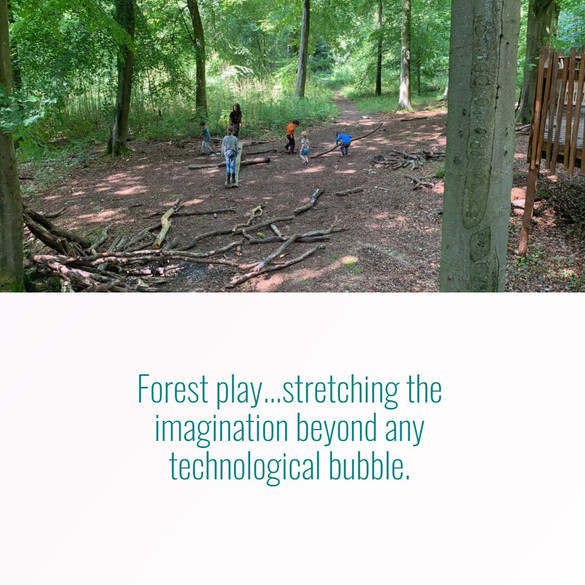 Forest nature play