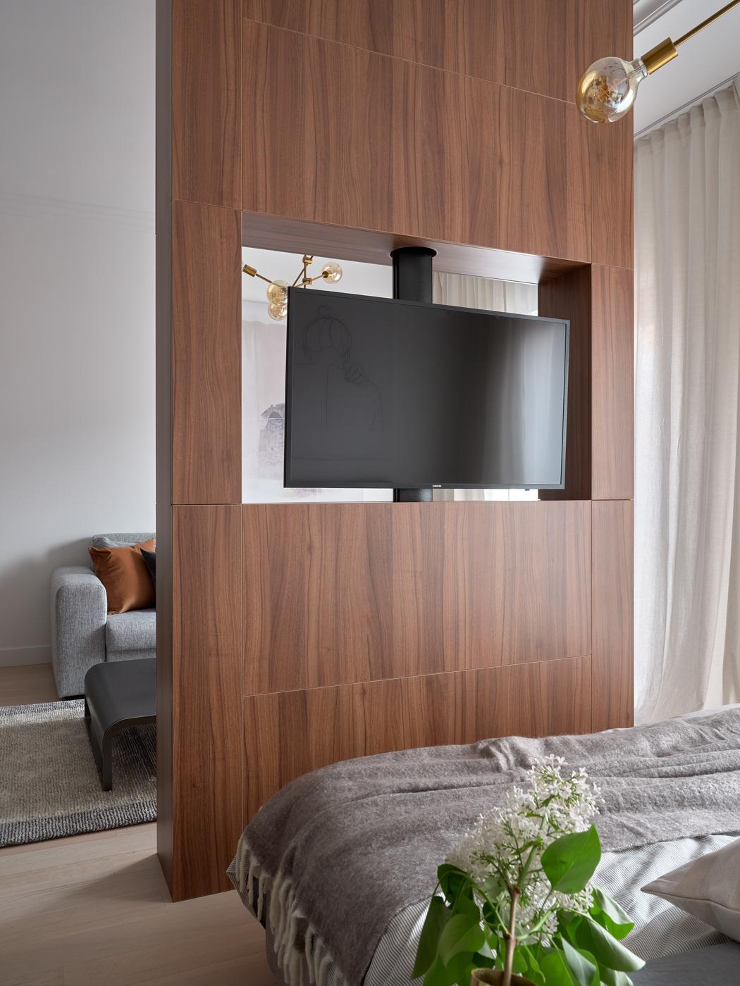 ТВ перегородка