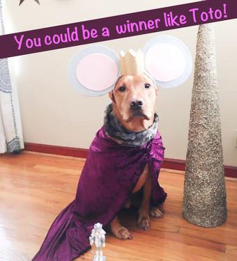 Winner Week 1: Toto