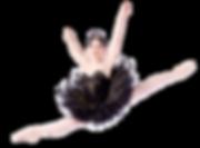 BlackSwan_LeapNOBG.png