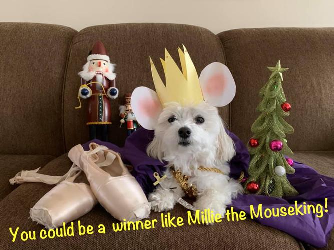 Winner Week 1: Millie