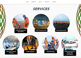 tms qatar website.png