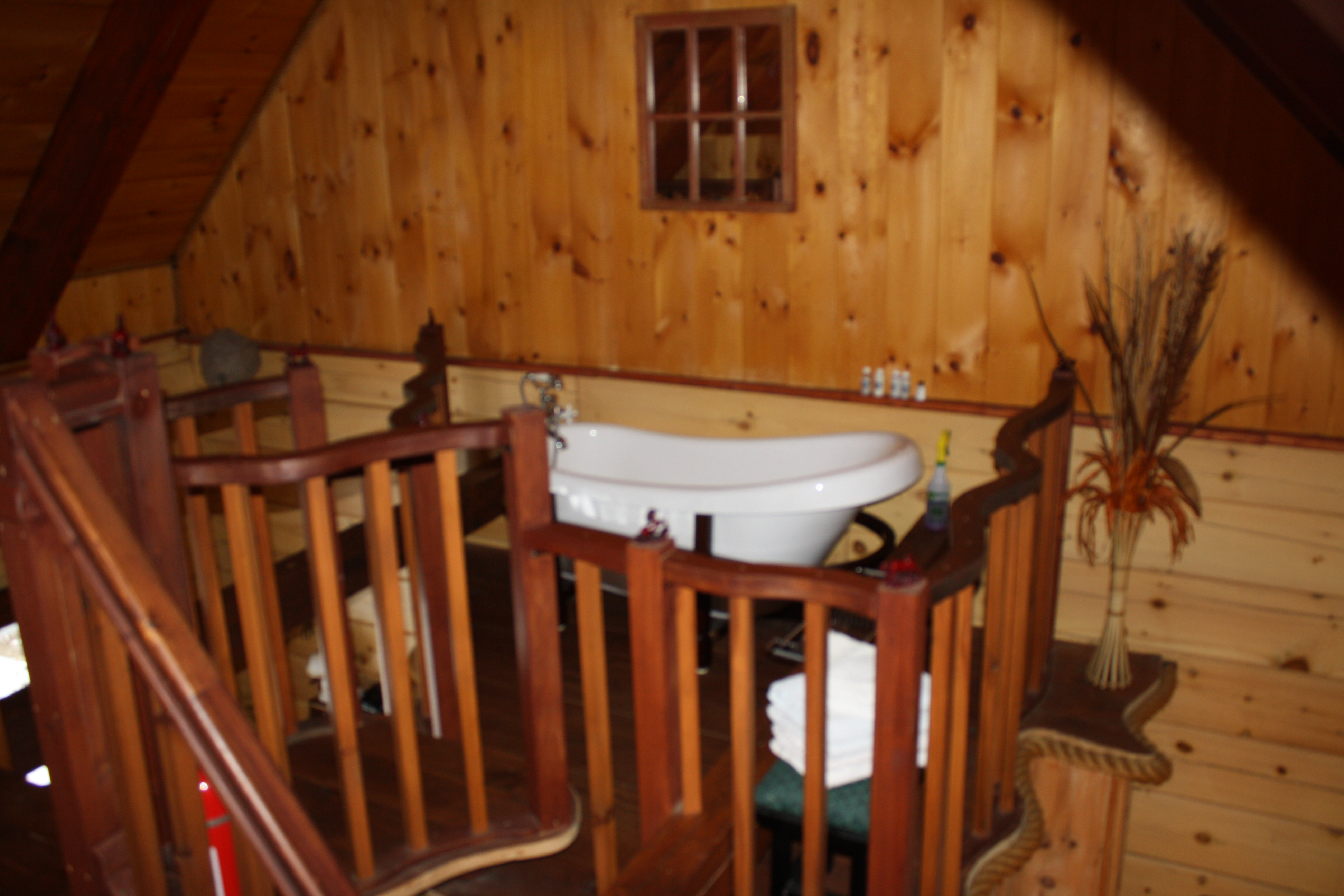 bain 3