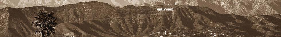 hollywood hills.jpg