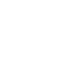 נעמי מיכאל. יעוץ אישי ולימודי תודעה | לוגו