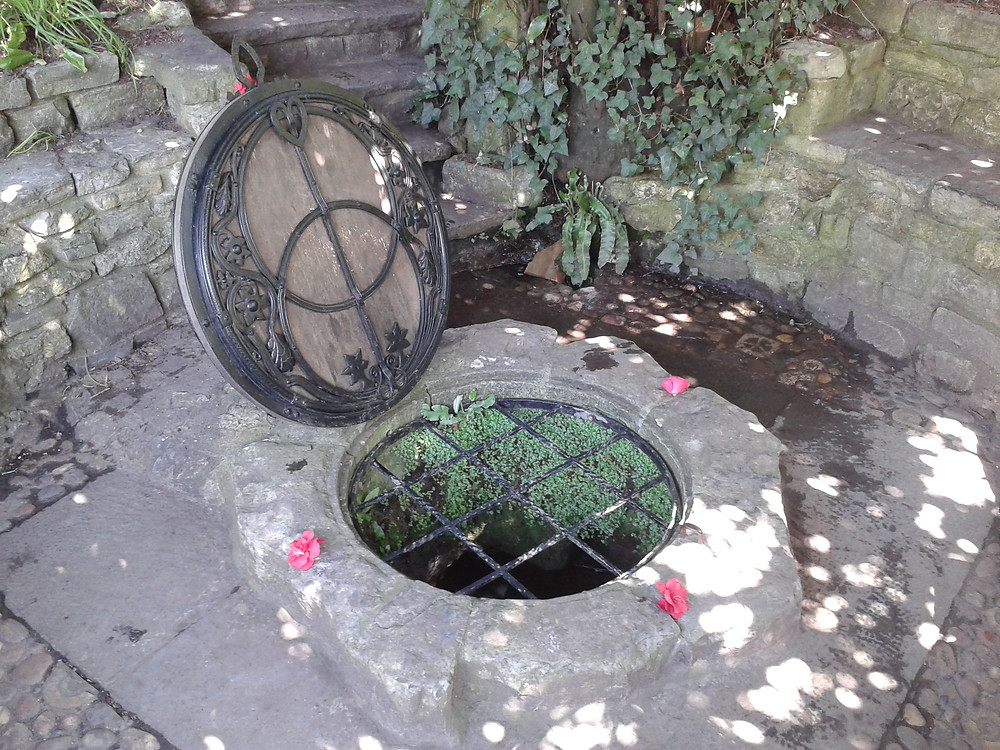 Nature Therapy, Emotional Healing and Earth Healing at Chalice Well